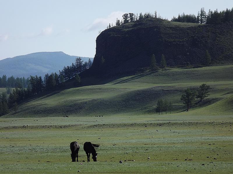 北モンゴル最奥部を訪ねて106